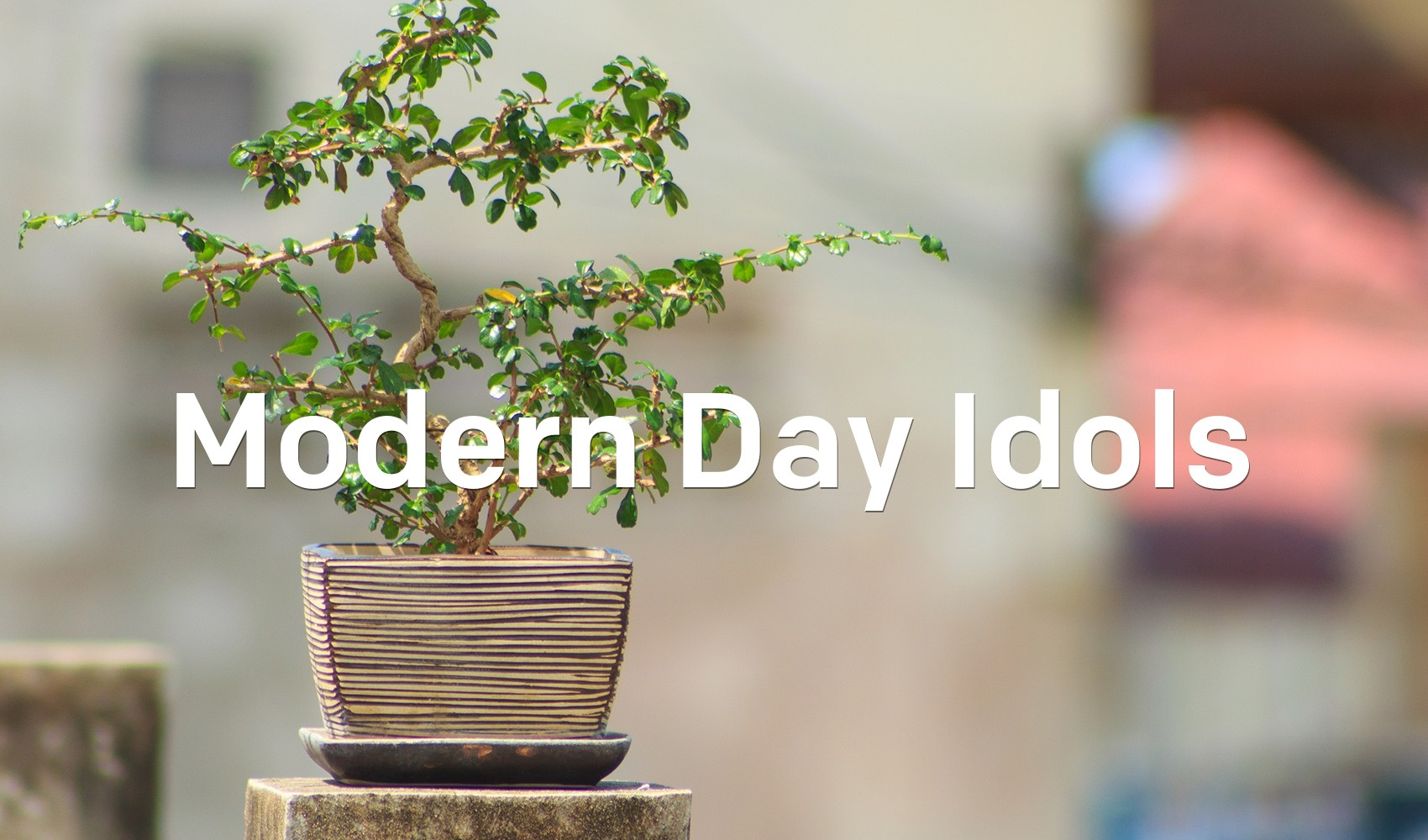 Modern Day Idols Articles Newspring Church